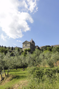 Pane e Vino, restaurant and B&B in Cortona